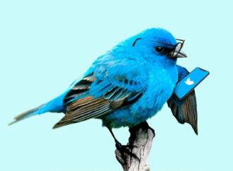 Niedługo zapłacimy za Twittera? Na razie to tylko testy…